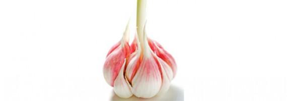 Simple Garlic Udo's Oil Recipe
