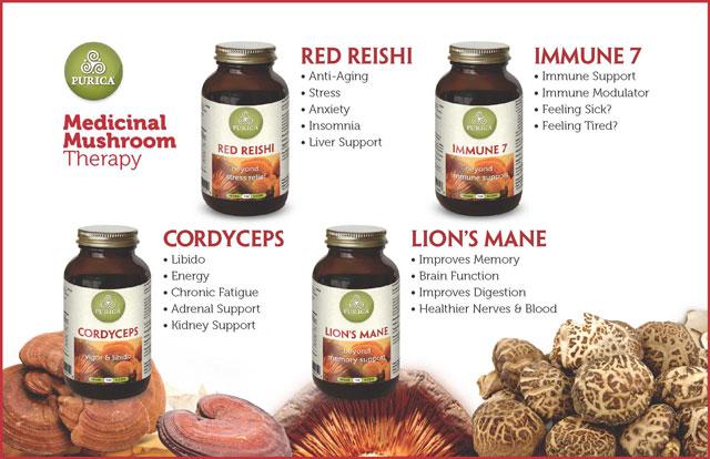medicinal Mushroom Therapy cordyceps lions mane