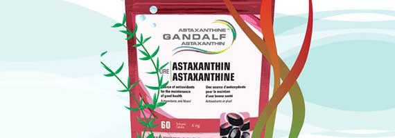 Nature's Most  Potent Antioxidant