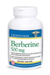 Dr-whitaker berberine